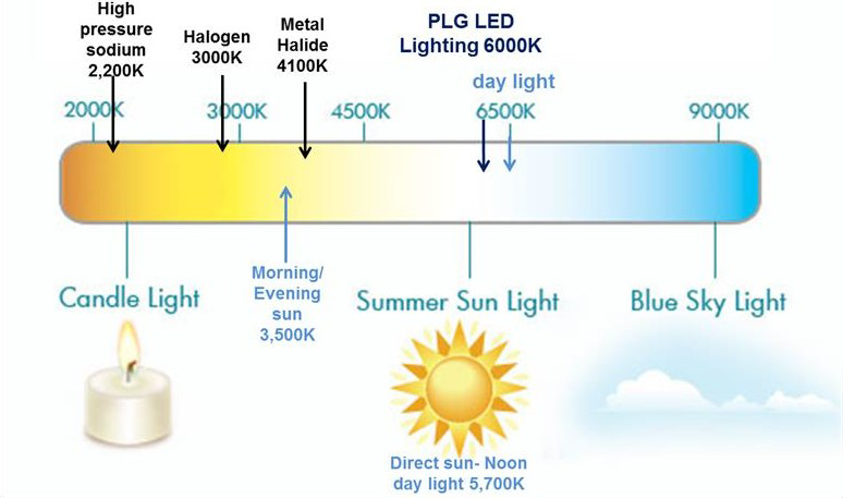 Kelvin Temperature Guide to Lighting