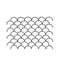 Clam Shell, 1 inch #30469 Sewing Buddies Australia
