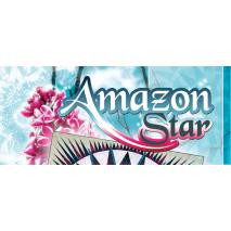 Amazon Star Pattern by Judy Niemeyer