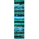 Aqua Teal 2 Rainbow aka Jelly Roll or Bali Pop